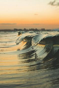 Wave ,,awesome