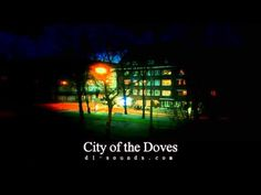 "Royalty Free Time-Lapse/Soundscape Music ""City of the Doves"" Instant download @D L-sounds.com"