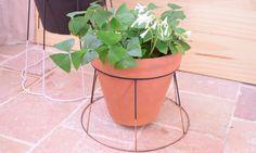DIY : transformer en un clin d'oeil un abat-jour en support pour vos plantes