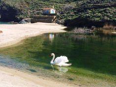 Λίμνη Αχλας! - Ένας μαγικός παράδεισος επί της γης! Φώτο: Onar Andros