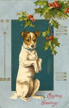 "<span class=""caption_text"">Vintage begging dog Christmas card</span>"