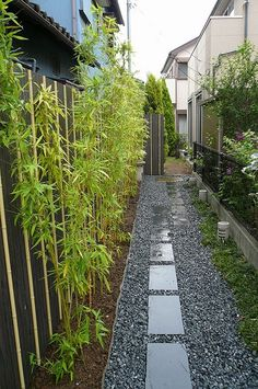small space Japanese style garden for side of house