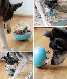 Mingus & Dottie Try It: P.L.A.Y. Wobble Ball Toy