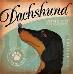 Dachshunds and Wine... my favorite! I have this hanging in my kitchen...thx kids!