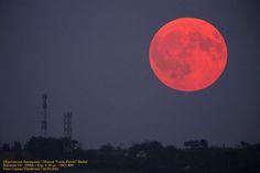(FOTO) Luna și-a schimbat culoarea. Eclipsa prin penumbră surprinsă în România. Vezi aici Foto: Celestial, Pictures, Outdoor, Magic, Photos, Outdoors, Outdoor Games, The Great Outdoors, Grimm