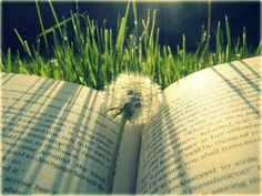 """""""Be you writer or reader, it is very pleasant to run away in a book."""""""