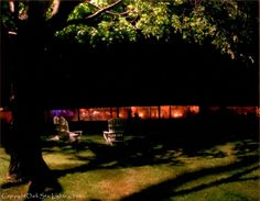 "A little-known lighting effect, called ""down-lighting"", brights the silhouettes of tree branches & leaves to the grassy ground at a wedding reception.  Create a beautiful, unexpected lit space for conversations & relaxation at your event.  By Dark Star Lighting, Inc."