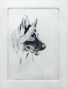Aude-Noelle Nevius - Blog: Dry point portrait of Malik