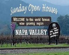 Napa Valley Sunday Open Houses January 5, 2014 Let me put my nearly 30 years experience to work for you and help you find the perfect Napa Valley property