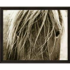 A horse's inborn mag