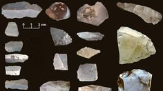 The discovery of ancient stone tools at an archaeological dig in Texas could push back the presence of humans in North America, perhaps by as much as years. Indian Artifacts, Native American Artifacts, Historical Artifacts, Native American History, Ancient Artifacts, American Indians, American Life, European History, Ancient Egyptian Art