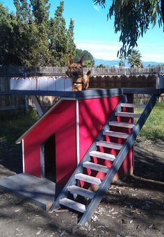 Dog House with Viewing Deck - OBN members can get free plans to this Puppy Obedience Training, Basic Dog Training, Training Your Puppy, Dog Training Methods, Dog Training Techniques, Training Dogs, Baby Dogs, Dogs And Puppies, Le Chihuahua