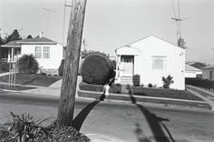 Henry Wessel, Jr., Albany, California. 1972.