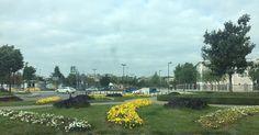 #park #bahçe #çiçek #peyzaj #manzara #pendik #sahil #garden #flowers #landscape #цветок ##парк #istanbul #стамбул #турция #türkiye http://turkrazzi.com/ipost/1515765029075420797/?code=BUJFENZAAZ9