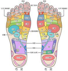 足つぼ Health Diet, Health Care, Health Fitness, Foot Reflexology, Human Anatomy And Physiology, Acupressure Points, Homeopathy, Massage Therapy, Science And Nature