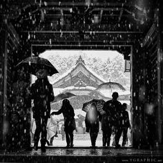 "thekimonogallery: ""Gate to the Sacred"": Yahiko Shrine in Niigata, Japan. by Yosuke Kobayashi Creative Photography, Art Photography, Walking In The Rain, Osaka Japan, Poses For Pictures, Great Photos, Japanese Art, Beautiful World, Picture Photo"