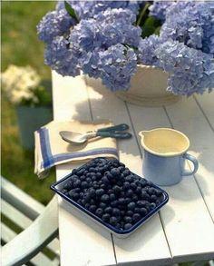 Picnic essential: a blanket! picnic picnic wedding of July Free Printable. Periwinkle Blue, Love Blue, Blue And White, Blue Aura, Purple Haze, Hortensia Hydrangea, Blue Hydrangea, Summer Fun, Summer Time