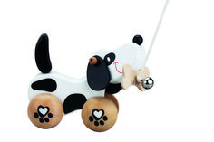 Pull Dog from Spectrum Educational Ltd Walking In The Rain, Imaginative Play, Educational Toys, Cute Dogs, Bones, Baby, Kids, Spectrum, 1 An