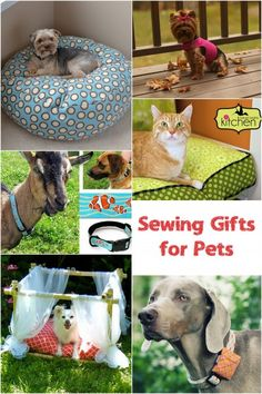 Sewing Gifts for Pets - here are some great ideas to sew for your four legged friends!  | http://fabricshopperonline.com/gifts-for-pets-sewing-tutorials/