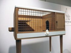 Chimere_rabbit hutch