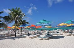 Family things to do on Castaway Cay