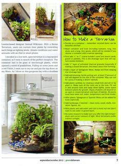 Bonsai Terrarium » Terrariums and wedding centerpieces in Philadelphia PA