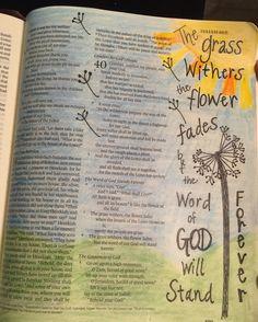 Isaiah 40:8 Bible Journaling