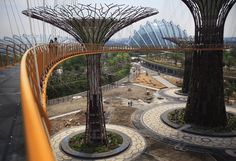 Aerial Garden Walkway, Singapore
