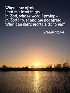 Verse of the Day – Psalm Christian Posters, Christian Quotes, Biblical Quotes, Bible Quotes, Psalm 119 11, Do Not Fear, Verse Of The Day, Spiritual Inspiration, Bible Scriptures