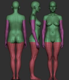 Image result for zbrush female base mesh