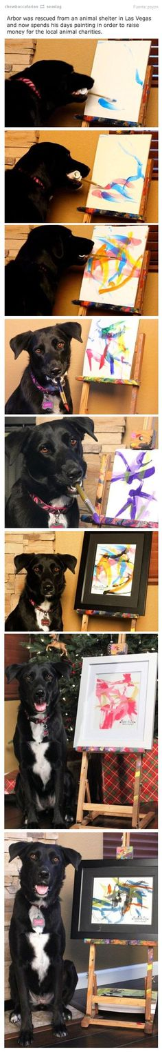 The Dog Artist - Rescued from an animal shelter, Arbor's paintings raise money for animal charities.