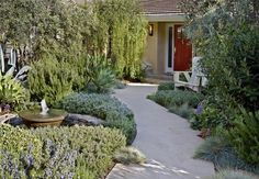 images of turf rebate compliant landscape - Google Search