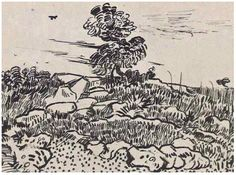 "Vincent van Gogh, ""Rocks with Oak Tree.""  Pen, reed pen.  Arles: 17-Jul, 1888.  Collection Mrs. M. Feilchenfeldt  (Zurich)."