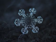 Snowflake macro photo: Ice crown, large snow crystal with broad arms and unusual pattern in the center, resembling coat of arms with shield and spears, captured on dark woolen fabric in natural light. Available as free download, widescreen desktop wallpaper, print and license for commercial use.