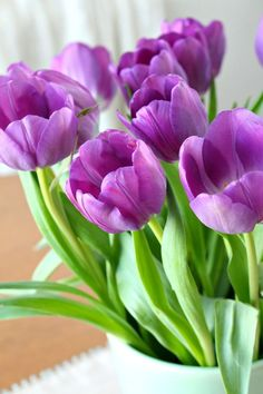 Purple tulips in a vintage mint green vase for spring - my favorite spring decorating idea! Purple Tulips, Tulips Flowers, Flowers Nature, Daffodils, Pretty Flowers, Spring Flowers, Exotic Flowers, Green Flowers, Yellow Roses
