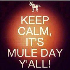 Mule Day in Columbia TN!!