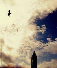 """Photography: Asas para os teus Sonhos, Photo credits by Helena Simões da Costa © Photography 2016 (Lisboa), no meu artigo desta semana """"Há sempre uma luz na escuridão"""", blogue do Arlindo. Outros trabalhos meus: http://helenasimoesdacosta.wix.com/helencostafotografia #sky #clouds"""