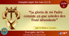 MISIONEROS DE LA PALABRA DIVINA: EVANGELIO - SAN JUAN  15,1-8