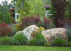 Designed for privacy within a subdivision, this front yard landscape uses natural boulders and a variety of color and texture to distinguish the home from the neighbors property.