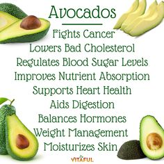 Food Facts: 9 Health Benefits of Avocados   Natural Remedies   Holistic  