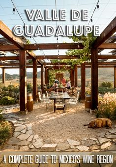 Valle De Guadalupe A Visitor S Guide To Mexico Wine Country