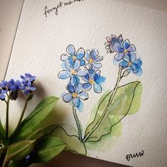 Love these little forget-me-not flowers. 4/100 #the100dayproject #sketchaday…