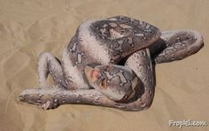 Lady Transforms Into Snake When Forced To Beach | 24gist
