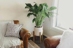 Mid Century Plant Stand - Modern, Rustic, Retro, Home Decor