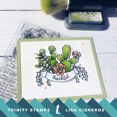 A fun cactus/succulent card created using Trinity Stamp Company, Simon Says Stamp stencil, Copic markers, Distress Oxide inks.