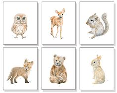 Woodland Animal Fine Art Print Set created from Our Original Watercolor Paintings: Bear, Deer, Fox, Bunny, Owl, and Squirrel. Perfect for any
