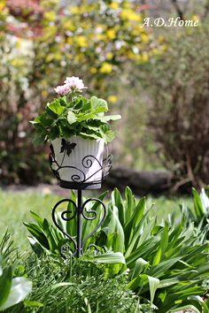 kwiaty, ogród, dom, Dom, Plants, Gardens, Planters, Plant, Planting