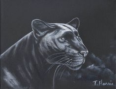 Panther 8x10 original oil painting art & collectibles