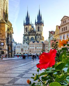 """Old Town Square: The magical ❤ of Prague . Cool Places To Visit, Places To Go, Places Around The World, Around The Worlds, Prague Photos, Prague Czech Republic, Old Town Square, Voyage Europe, Thinking Day"