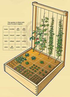 Raised Herb Garden Planter Idées de vidéo rapides